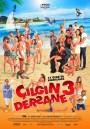 Cilgin Dersane 3