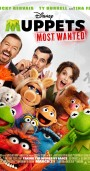 muppets-most-wanted-ozel-sinema-aura-vip