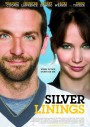 silver_linings_playbook-ozel-sinema-aura-vip