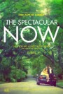 the-spectacular-now-ozel-sinema-aura-vip